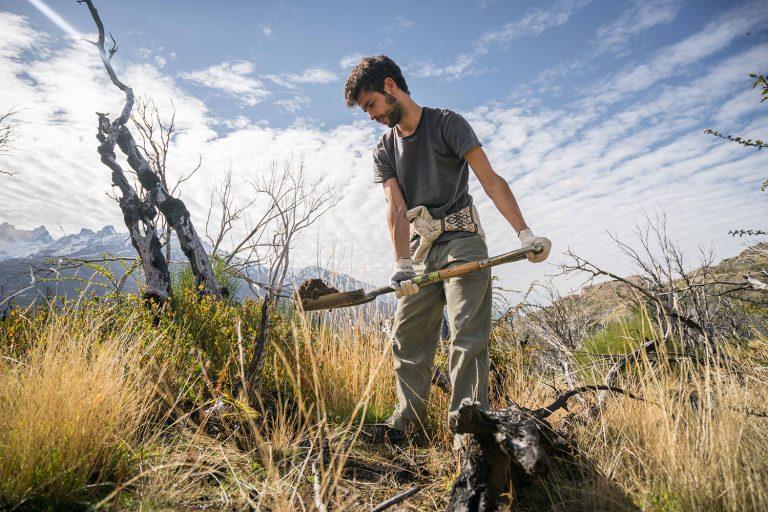 ReforestArg - Asociación de Amigos de la Patagonia